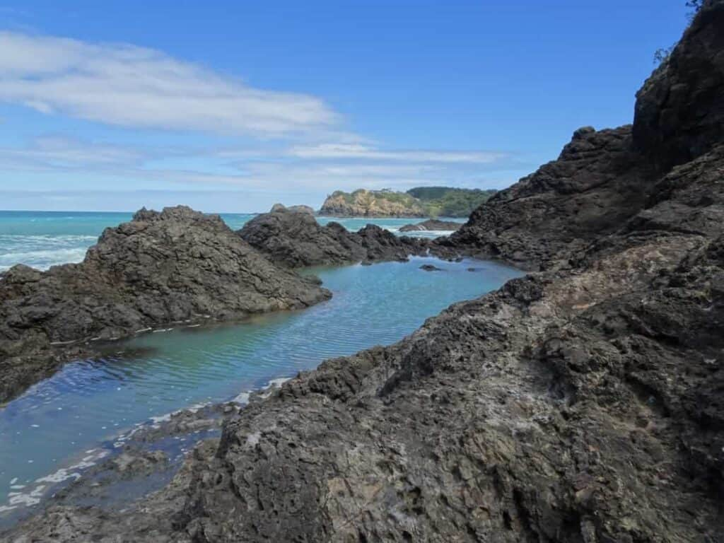 mermaid-pool-north-island-new-zealand