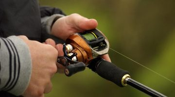 best baitcasting reels for beginners