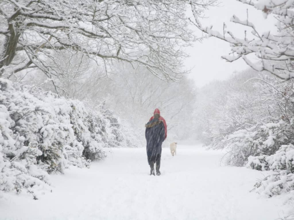 snowy-path-with-two-people-and-dog-trudging-through-cold