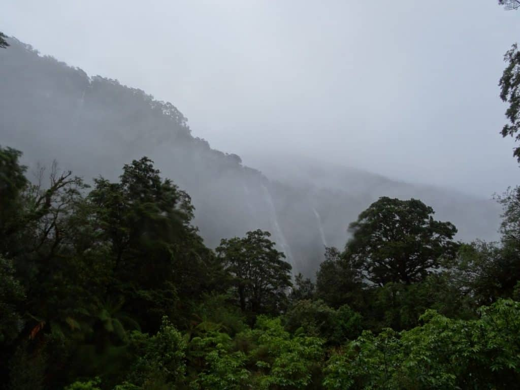 rainy-weather-beautiful-forest-waterfalls